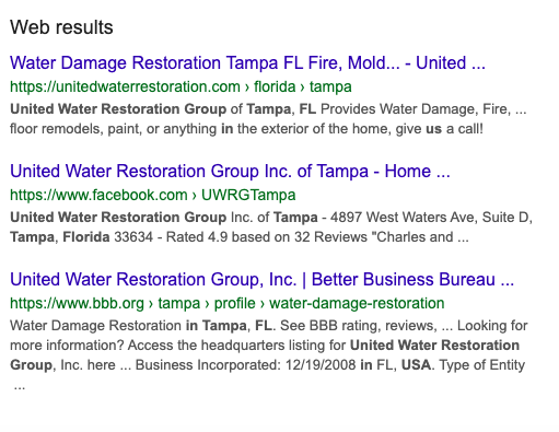 Google Web Results